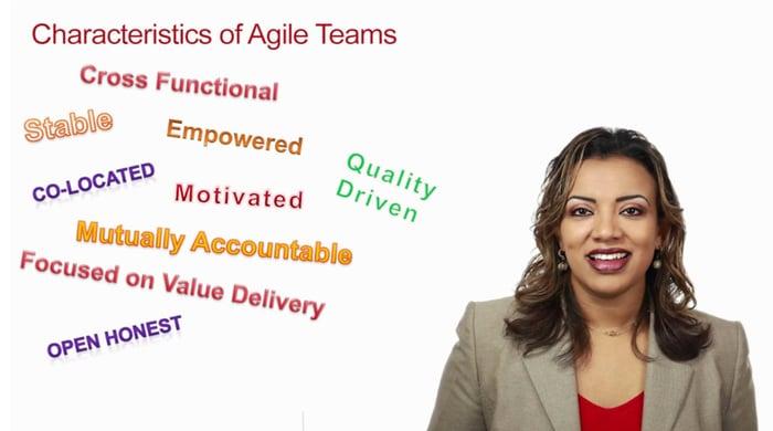 Agile Team Videos course image
