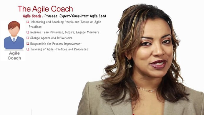 Part 7 – Agile Coach