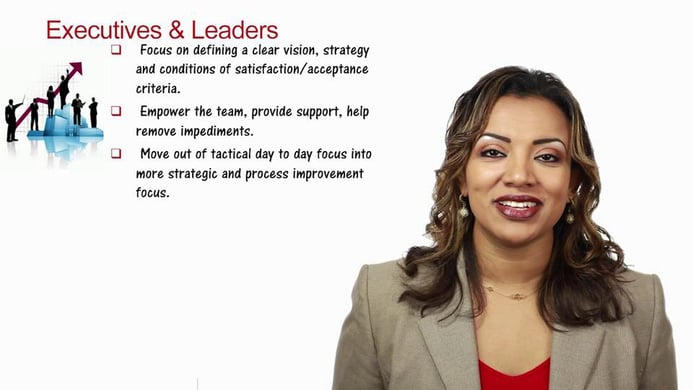 Part 13 – Agile Executives and Leaders